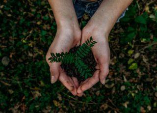 Refurbed e GreenApes: una partnership per il bene dell'ambiente
