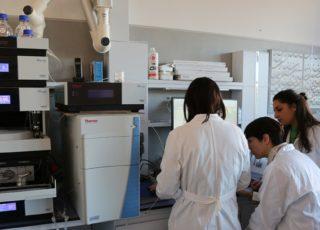 Techne: il nuovo laboratorio di ricerca 4.0