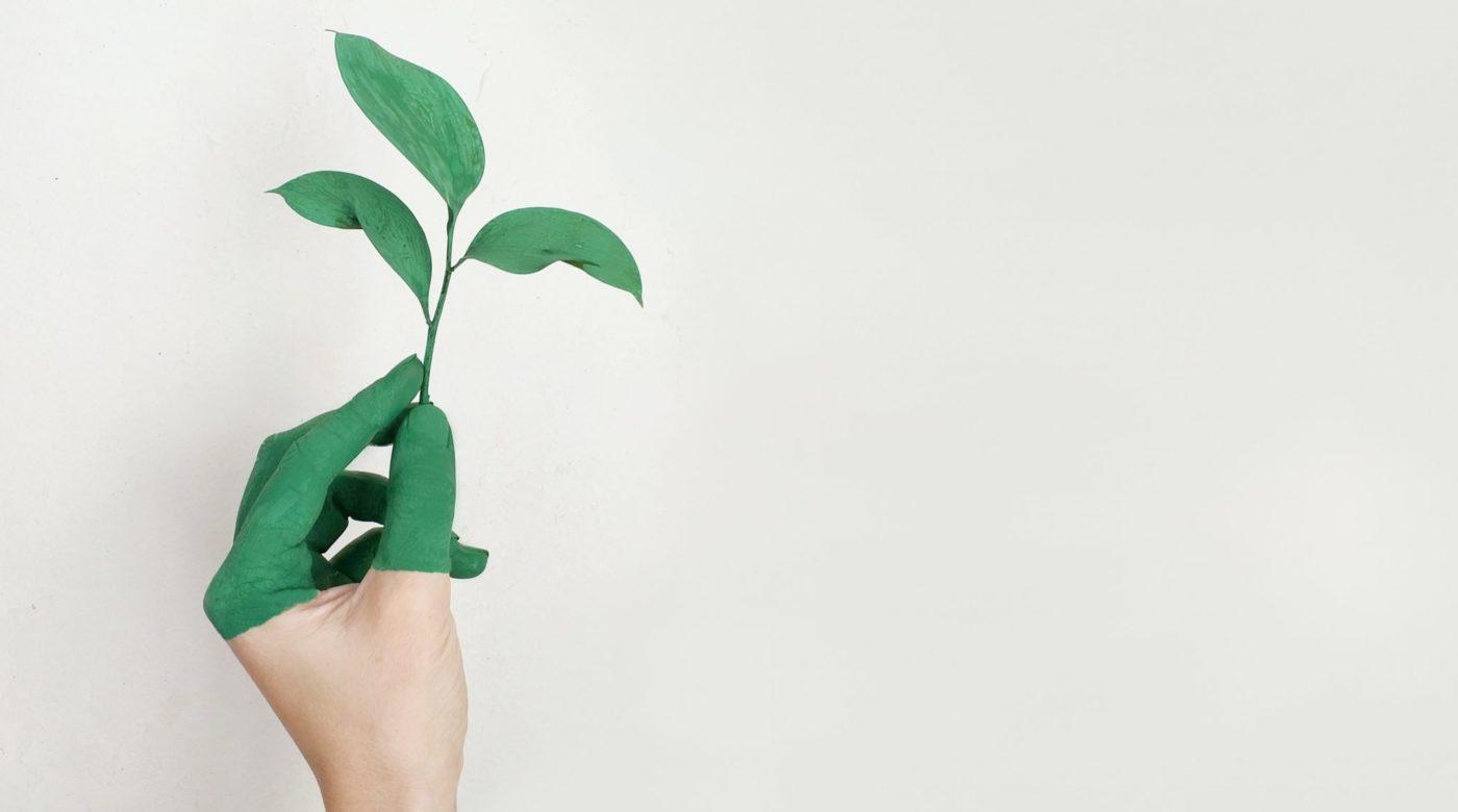 cuneo sostenibile