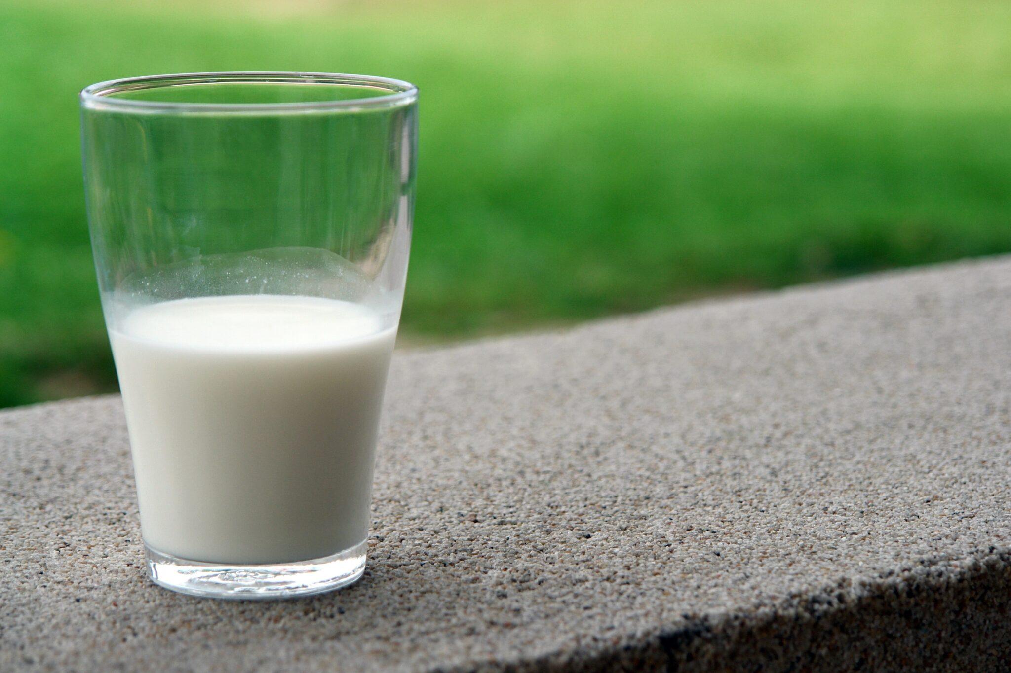 lattoferrina proteina
