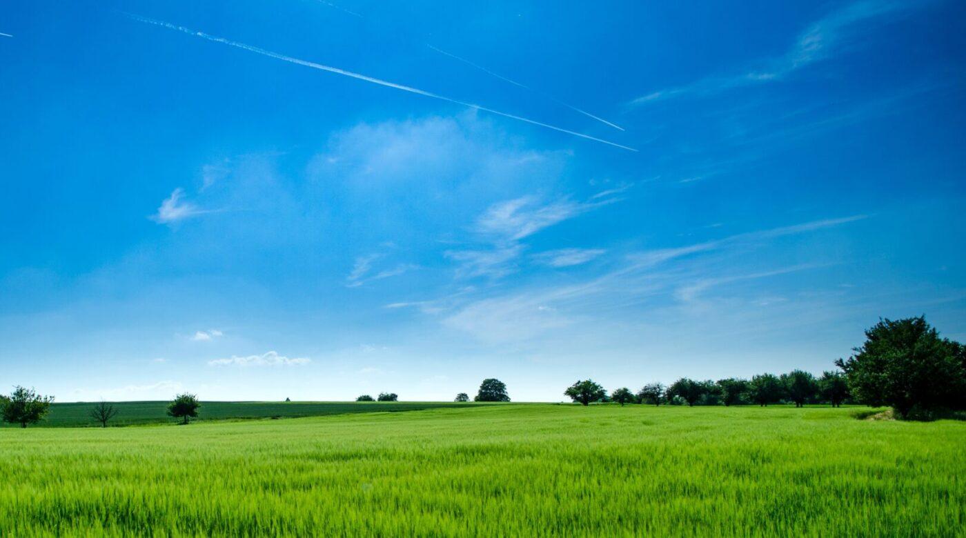 agricoltura e coronavirus