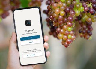 Haier lancia la cantinetta virtuale in collaborazione con Vivino
